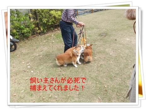 2011_0505_150235-DSCF4048.jpg