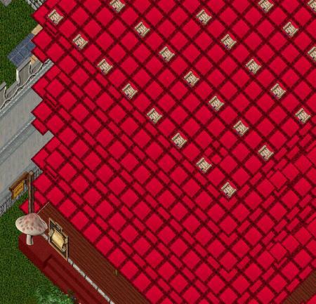 200810ゴザな家2