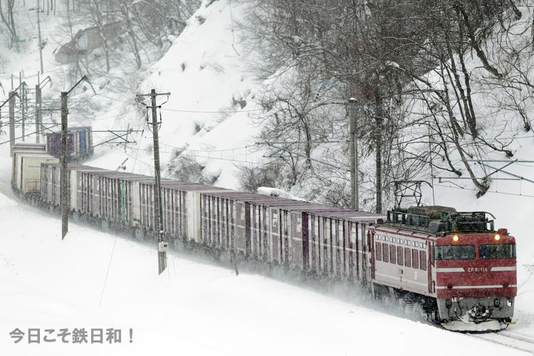 _MG_4527.jpg
