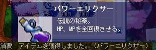 Maple100430_142321.jpg