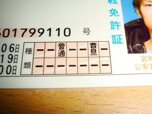 DSC08232.jpg
