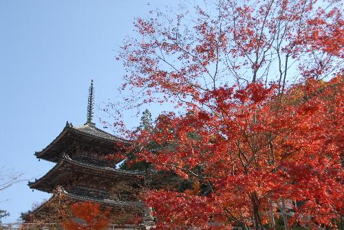 壺阪寺02
