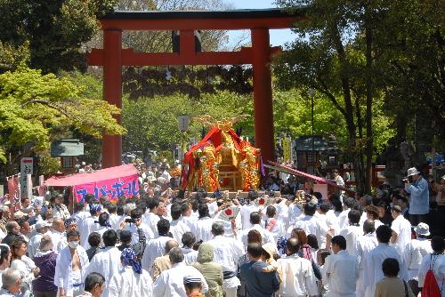 松尾神幸祭 11