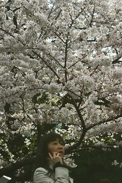 chidori_09_003.jpg