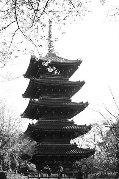 ueno09_mono06.jpg