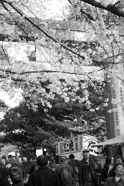 ueno09_mono07.jpg