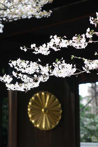 yasukuni_09_007.jpg