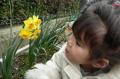 10-3_20090310092533.jpg