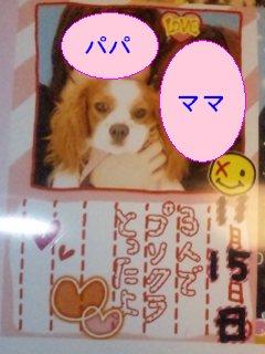 purikura2.jpg