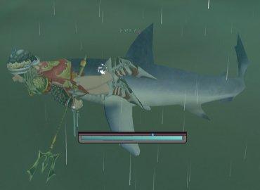 ユグに出る巨大ザメと対面