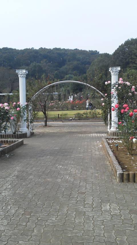 20111105102013.jpg