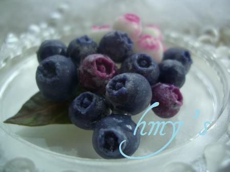blueberry+051_convert_20100209145421.jpg