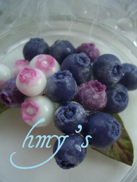 blueberry+053_convert_20100209145522.jpg