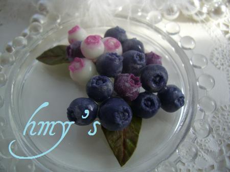 blueberry+054_convert_20100209145602.jpg