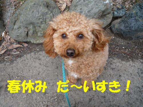 春休み大好き☆