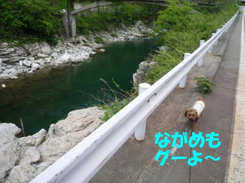 川沿いジョギング