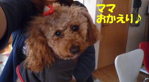 ママおかえり_1