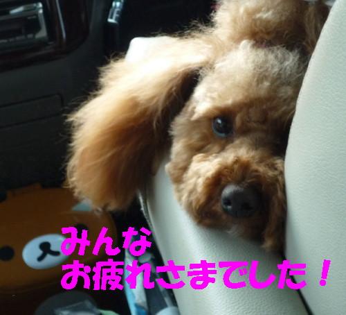 お疲れさま_1