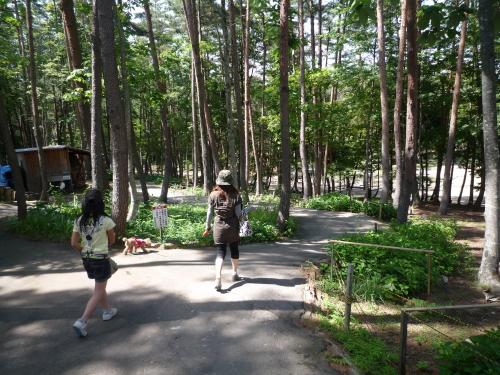 まきばの森2