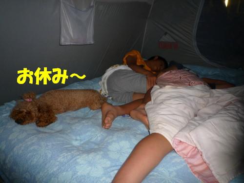 4 お休み~
