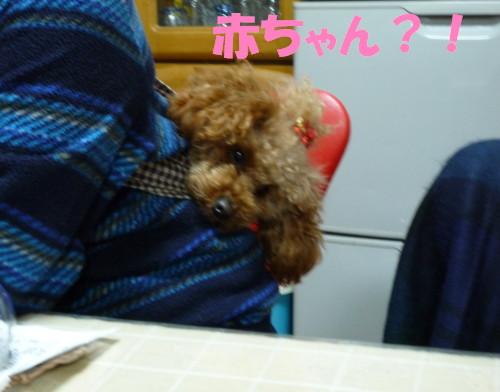 おんぶ_1