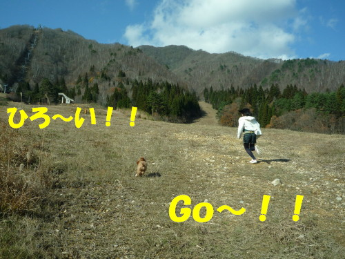 GO!!_1