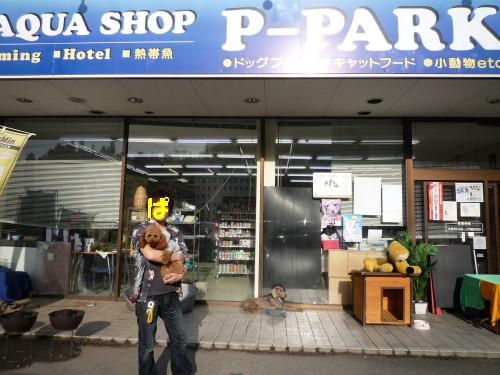 P-PARK_.jpg