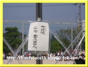 ブログ・しゅうや運動会 (11)