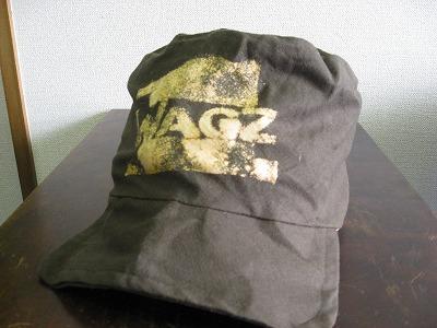 wagz 1