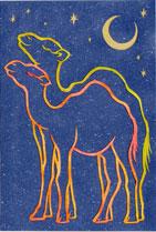 星空の下、駱駝