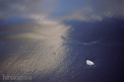 海辺2008