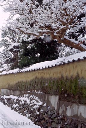 雪の佇まい