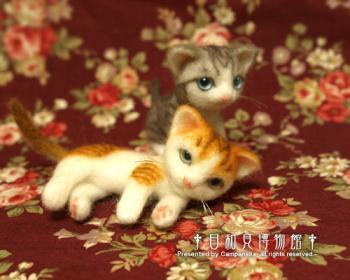 cat0910b.jpg