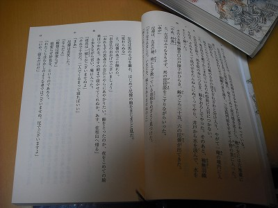 v-DSCF5063.jpg