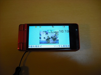 v-DSCF9601.jpg