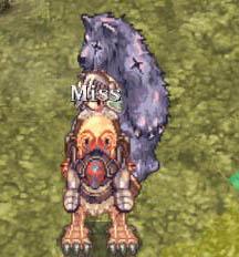 あっぱー熊