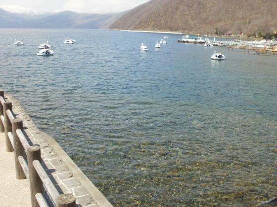 支笏湖のボート乗り場近くです。