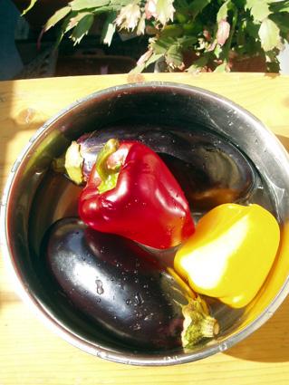 日なた野菜