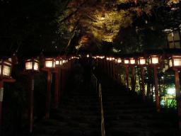 京都 旅行 紅葉 紅葉 夜景 ライトアップ 貴船神社 縁結び