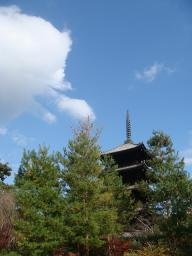 京都 旅行 紅葉 紅葉 仁和寺 五重の塔 青空