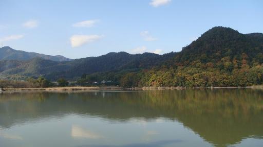 京都 旅行 紅葉 紅葉 広沢池 青空 山