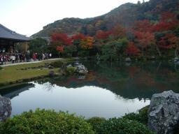 京都 旅行 紅葉 紅葉 天竜寺 池