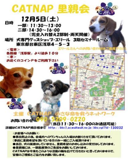 1258513367_convert_20091119124532.jpg