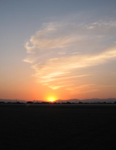 2006-0601朝日