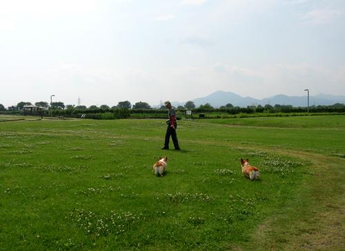 2009-0528江図湖公園