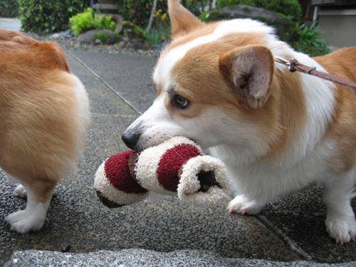 外にもおもちゃ