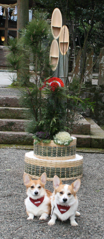 20100104門松の前