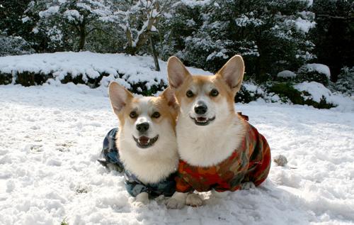 2010雪☆2ショット