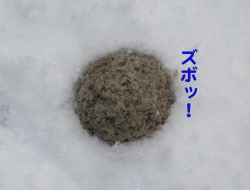 雪に埋まるボール