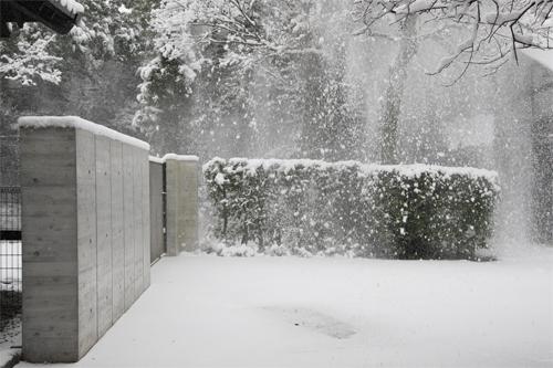 2010-0113大雪